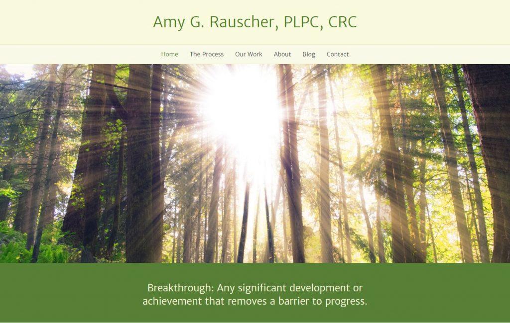 Amy G Rauscher